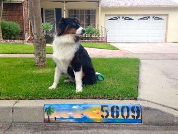 Buddy on curb appeal
