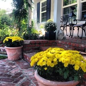 Los Altos porch in the Fall